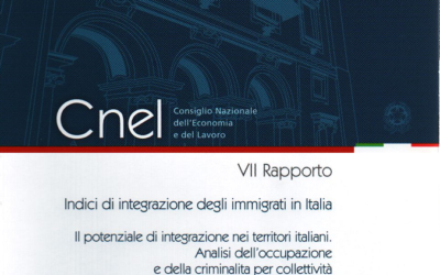 Seventh Report of Indecs of Integration of migrants in Italy